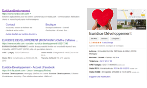 Screenshot encart web Google My Business